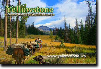 Yellowstone Pack Trip